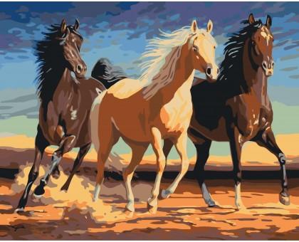 Картина по номерам Прекрасные лошади