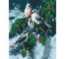 Картина по номерам Зимние птички
