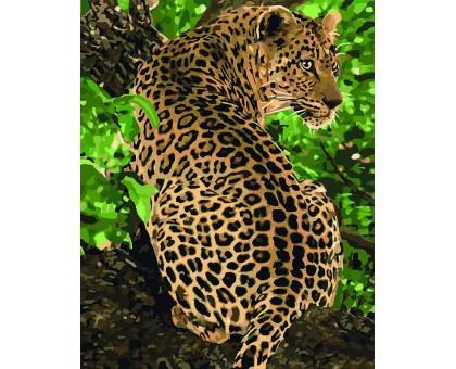 Картина по номерам Леопард на дереве