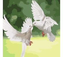 Картина по номерам Белые голуби