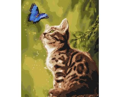 Картина по номерам Загадочная бабочка