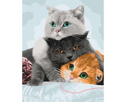 Картина по номерам Три кота