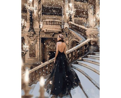 Картина по номерам Ночь в опере