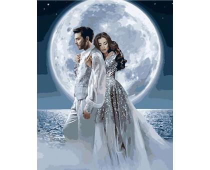 Картина по номерам Под лунным светом