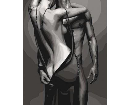 Картина по номерам Passion