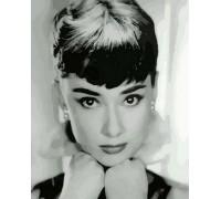 Картина по номерам Одри Хепберн