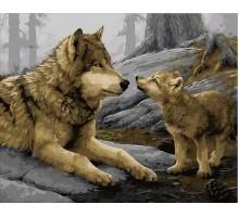 Картина по номерам Волчонок