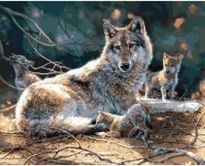 Картина по номерам Волчата