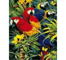 Картина по номерам Красочные ара
