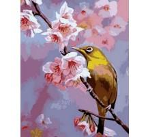 Картина по номерам Колибри на яблоневой ветке