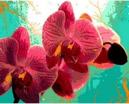 Картина по номерам Тропическая орхидея