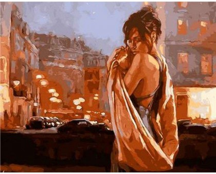 Картина по номерам Объятия ночного города