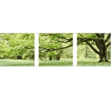 Картина по номерам Триптих. Зеленое дерево