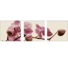 Картина по номерам Триптих. Розовые орхидеи