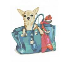 Картина по номерам Собачка в женской сумочке