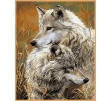 Картина по номерам Степные волки (в раме)