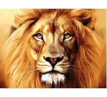 Картина по номерам Гордый лев