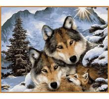 Раскраска по номерам Семья волков (в раме)