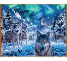 Картина по номерам Волки и северное сияние (в раме)
