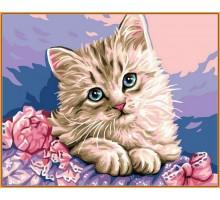 Картина по номерам Милый котик (в раме)