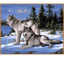 Картина по номерам Волки на снегу (в раме)