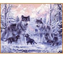 Картина по номерам Волчье семейство (в раме)