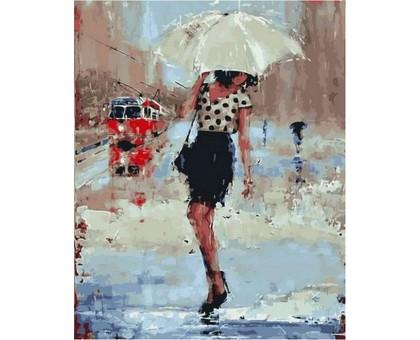 Раскраска по номерам Симфония дождя