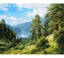 Картина по номерам Вид на реку