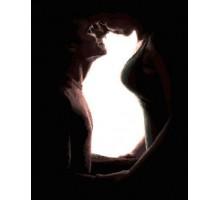 Картина по номерам Семья олицетворение кошки