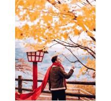 Картина по номерам Красный шарф