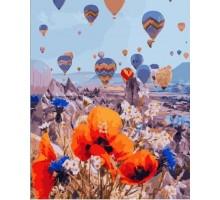 Картина по номерам Воздушные шары над цветочным полем
