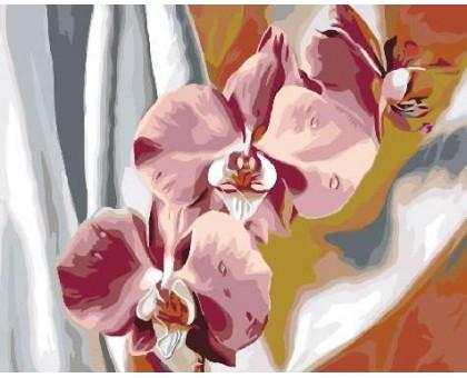 Картина по номерам Красочные орхидеи