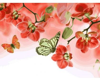 Картина по номерам Бабочки и красные орхидеи