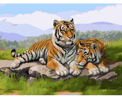 Картина по номерам Тигриное семейство