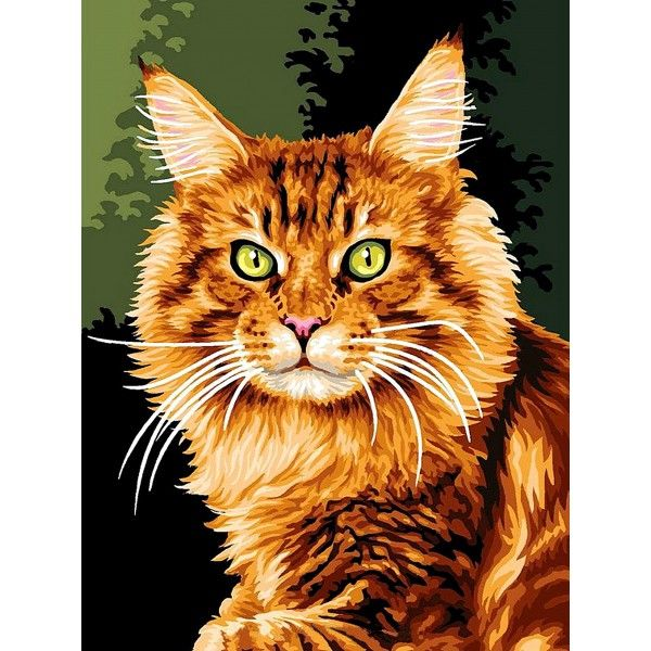 Картина по номерам Норвежская кошка