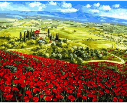 Картина по номерам Маки Тосканы