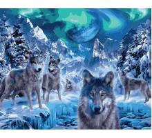 Картина по номерам Волки и северное сияние