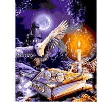 Картина по номерам Гарри Поттер Сова и книга