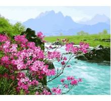 Картина по номерам Горные цветы