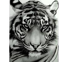 Картина по номерам Величественный тигр