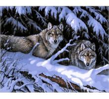 Картина по номерам Волки в лесу