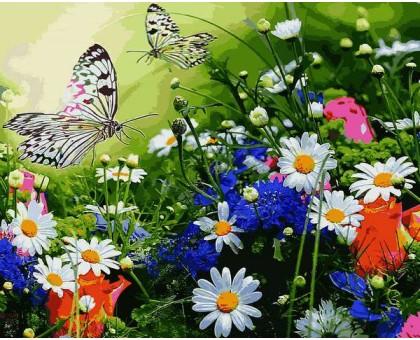 Картина по номерам Цветочное поле и бабочки