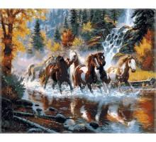 Картина по номерам Дикие лошади