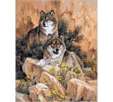 Картина по номерам Волки