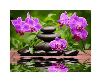Картина по номерам Лиловые орхидеи