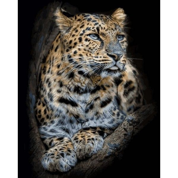 Картина по номерам Гордый леопард