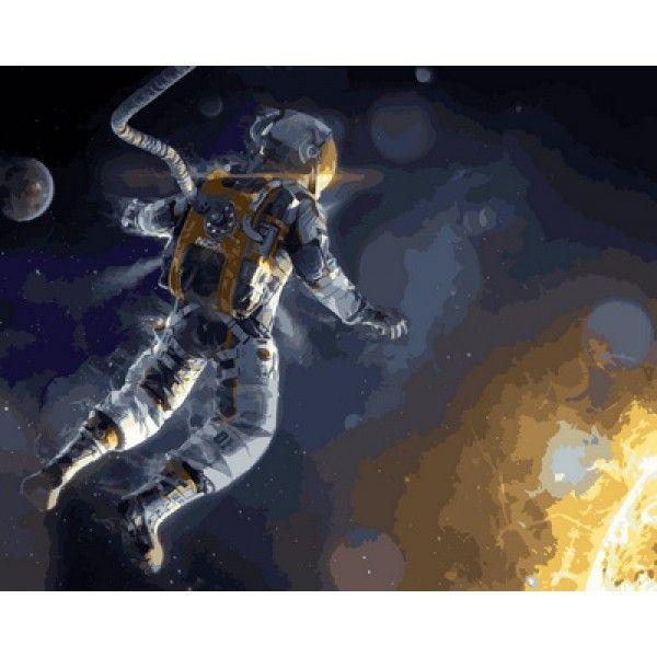 Картина по номерам Гравитация