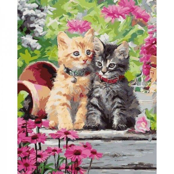 Картина по номерам Котята в саду