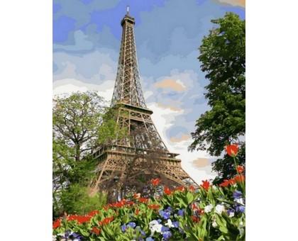 Раскраска по номерам Цветы весеннего Парижа