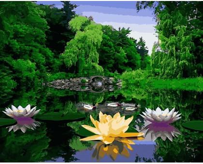 Картина по номерам Лотосы, утопающие в зелени